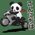 Panda Rider New School