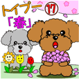 "Move! Children Toy Poodle 17 ""Spring"""