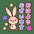 敬語ゆるウサギ