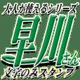★早川さん専用★大人が使うシリーズ