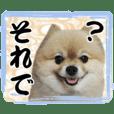 Pon & Ron daily sticker