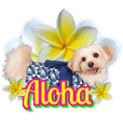 Happy Aloha sticker