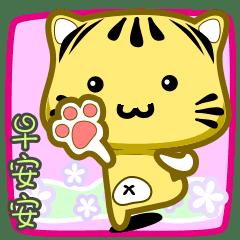 可愛條紋小貓貓!!!CAT173