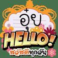 Auy Hello