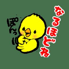 hiyoko chiro chan line スタンプ line store