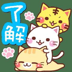 動態貼圖♪喵喵團隊【日常&貼心】