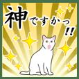 シンプル白猫☆挨拶・ほめる・返事