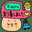 Kaoru専用セットパック