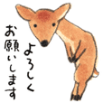 Ai Akikusa's deer Sticker