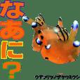 沖縄のウミウシが話す日常会話