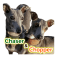 How cute! Chaser and Chopper!