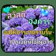 Greeting cards (Thai language)