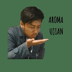 The Qanda 3.0