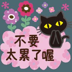 黑貓×貼心(北歐風)