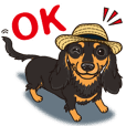A sticker willingly. Dachshund (B&T) 3