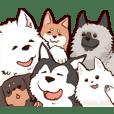 犬好きの為の40犬種