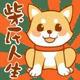 shiba inu life-Mengtai Ji