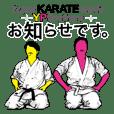 Super KARATE-MAN YP Brothers