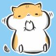 """""""kanji"""" hamster"""