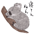 Adorable Koala. Japanese calligraphy.