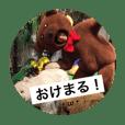 ashiki STAMP