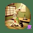 maiko geisya kei