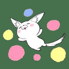 Kawaii~~~Fennec Fox (Japanese Ver.)