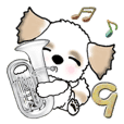Shih Tzu dog (Brass band club) vol.9