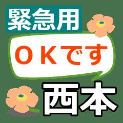 Emergency use[nishimoto]name Sticker
