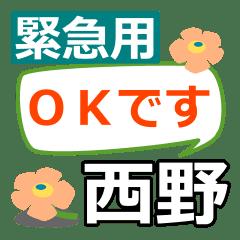 Emergency use[nishino,saino]name Sticker