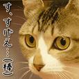 Throat-up CAT