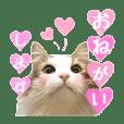 ルーシー姫♡スタンプ⑤