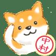 中村さん用 柴犬・チワワ・トイプー