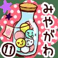【みやがわ/宮川】専用11