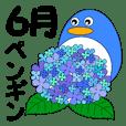 penguins of June in Japan