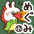 【めぐみ】専用12