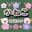 kaneko_oo
