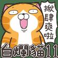 臭跩猫爱呛人11-白烂猫超级萌