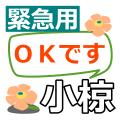 Emergency use[ogura,omuku]name Sticker