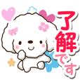 White toy poodle Sticker.