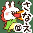 【さなえ】専用12