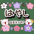 hayashi_oo