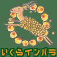 salmon roe- impala
