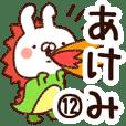 【あけみ】専用12