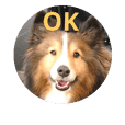 sheltie_stamp