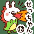 【せっちゃん】専用12