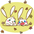 daily of mibit rabbit