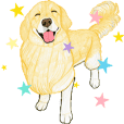 golden retriever motion sticker(English)