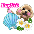 Hawaian flower and redtoypoodle English