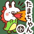 【たまちゃん】専用12